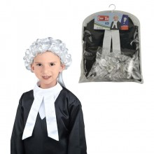 Career Costume - Judge