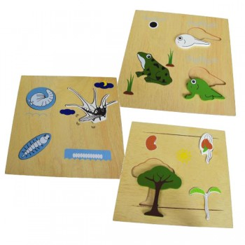 Frog , Seed , Mosquito Life Cycle Puzzle 3Pcs / Set
