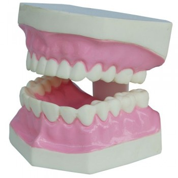 Small Tooth Hygiene Set