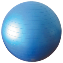 Anti Burst Gym Ball 22""