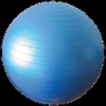 "Anti Burst Gym Ball 22"""