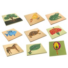Knobbed Puzzle (Set of 6)