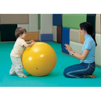 WePlay 85cm Gym Ball