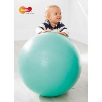 WePlay PVC-Free Balance Ball D55cm
