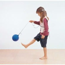 WePlay To & Fro Ball D-20cm