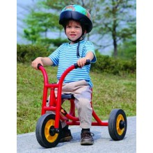 WePlay Push Trike