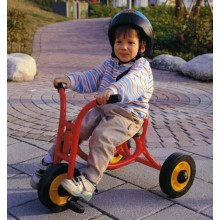 WePlay Trike Small